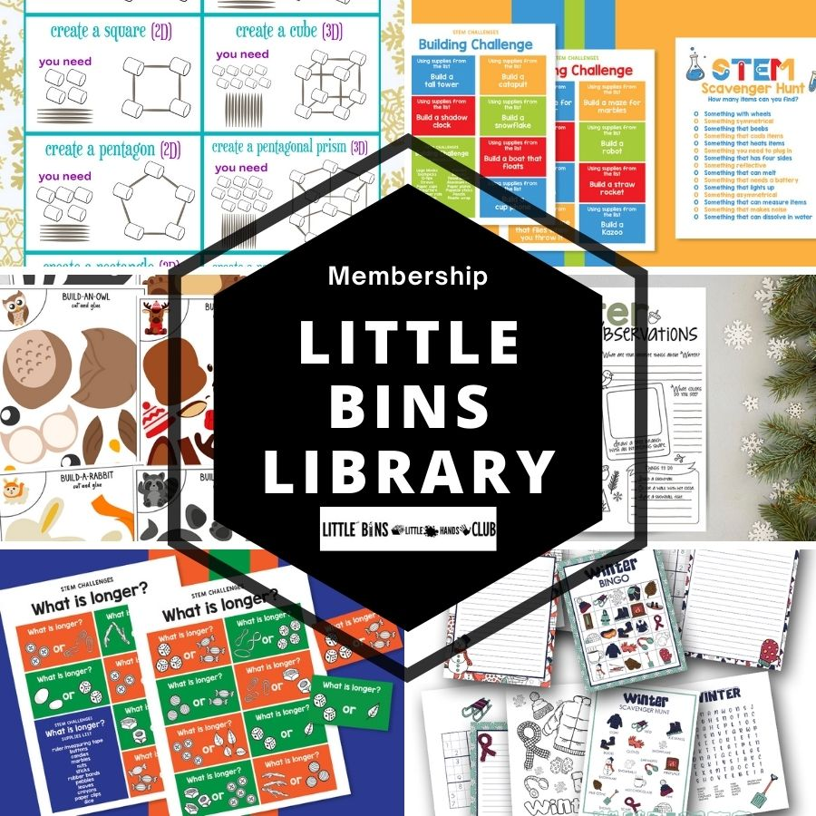 LITTLE BINS LibrarY club