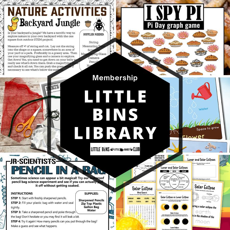 LITTLE BINS LibrarY club